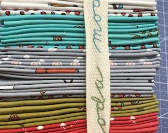 Little Apples Fat Quarter bundle by Aneela Hoey for Moda OOP HTF - 27 fat quarters