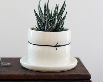 Mini Porcelain Planters with Black Linen // Attached drainage tray