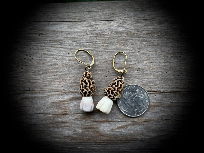 Brilliant Morel Mushroom Earrings Hand Carved Whitetail Deer Antler Ships Free Download Free Architecture Designs Barepgrimeyleaguecom