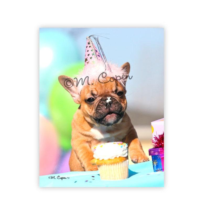 Alles Gute Zum Geburtstag Franzosische Bulldogge Karten Etsy