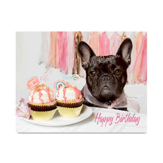 Glucklich Geburtstag Franzosische Bulldogge Karten Set Von 4 Etsy
