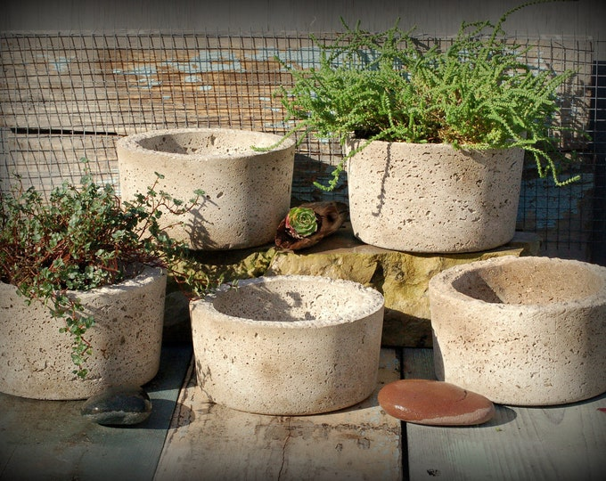 5 Simple Hypertufa Pots with Free Shipping