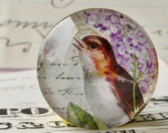 Songbird with lilacs, from our Beautiful Birds collection of handmade glass cabochons, 25mm round 1 inch bottle cap size, purple flowers