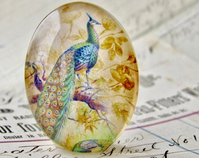 Perched Peacock, Beautiful Birds collection, glass oval cabochon, handmade cabochon in this shop, 40x30mm or 25x18mm, peacock feather