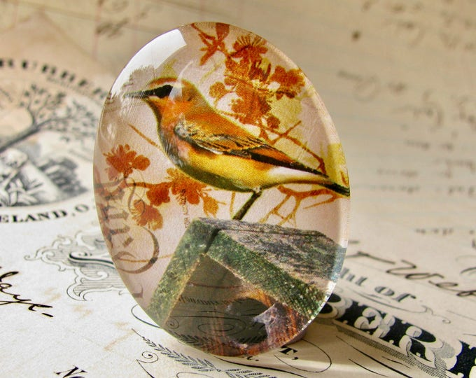 Garden bird sitting on a birdhouse, from our Beautiful Birds collection of handmade glass cabochons, 40x30mm oval cabochon, gardening