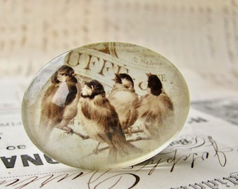 Vintage illustration of birds, handmade glass cabochon, photo glass, newsprint background, horizontal oval, 40x30mm, longways, sideways