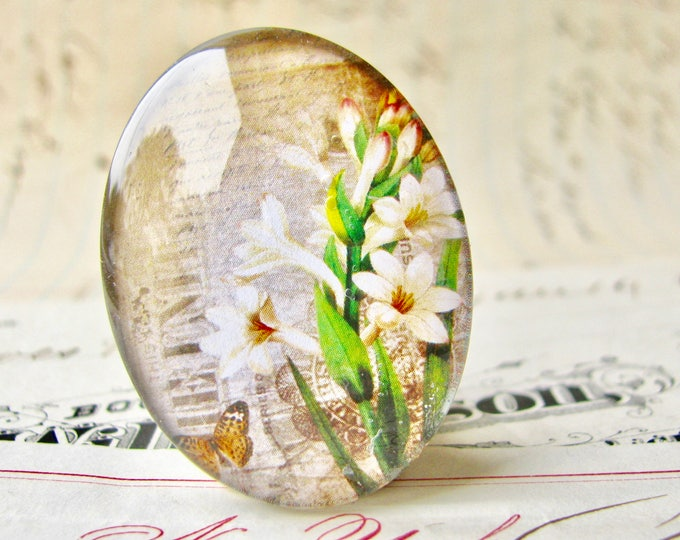 Amaryllis lily, Bella Donna, handmade glass oval cabochon from our Fabulous Florals collection, vintage flowers image, 40x30mm or 25x18mm