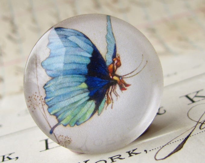 Tom Thumb riding a butterfly, handmade 25mm round glass cabochon, fantasy stories, bottle cap, 1 inch, from our Winged Wonders collection