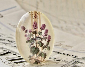 Flowering Oregano, herbs from our Vintage Kitchen collection of handmade glass oval cabochons, 25x18mm, food, cooking, herbal illustration