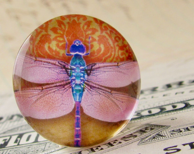Pink dragonfly cabochon, handmade glass oval cabochon, 25mm round, orange wallpaper background, from our Winged Wonder collection, bottlecap