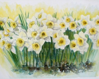 Daffodils Original Painting, Large, Floral  15x22 Watercolor Easter Lillies, Spring Flowers, Yellow, Green