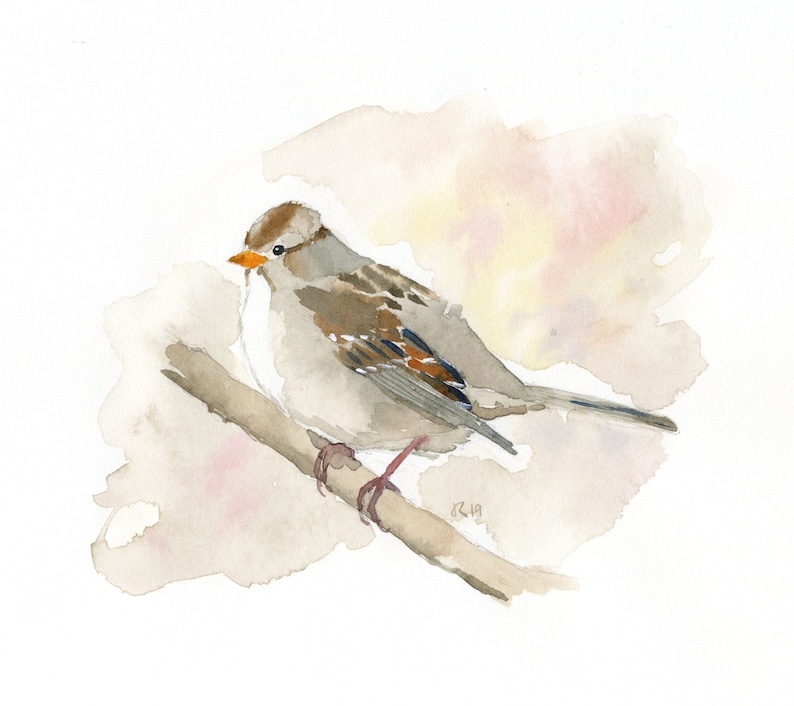 ORIGINAL White Crowned Sparrow  Watercolor image 0