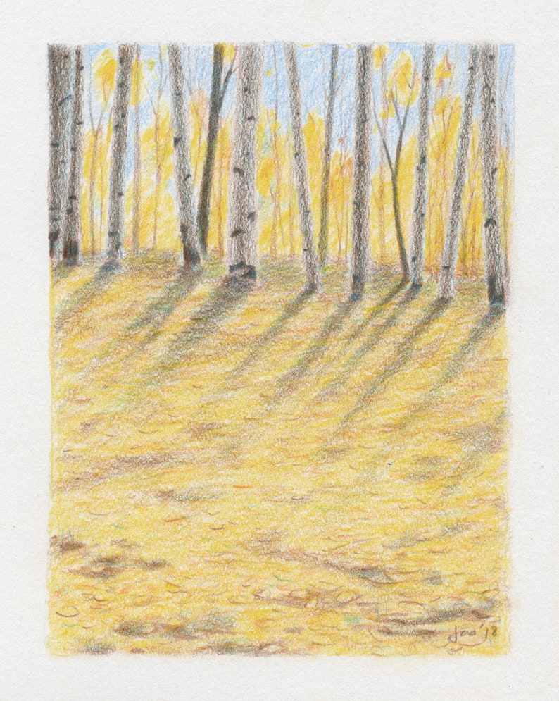 ORIGINAL Fall Trees  Colored Pencil Drawing image 0