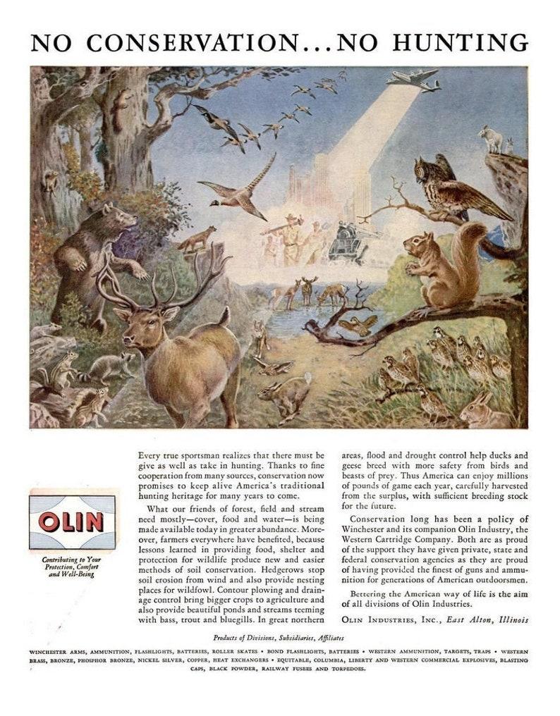 1946 Olin Ammunition /& Philadelphia Whisky Ad Vintage Wildlife Conservation Woodland Forest Hunter Gift Firearms Guns Hunting Man Cave Decor