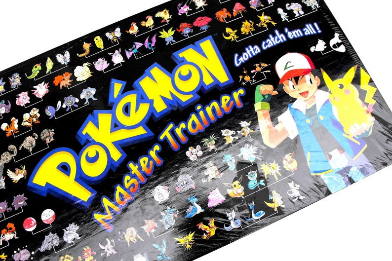 Pokemon Meister Trainer