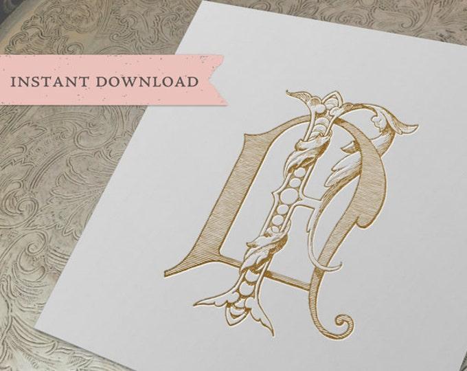 Vintage Wedding Monogram NF FN Digital Download N F