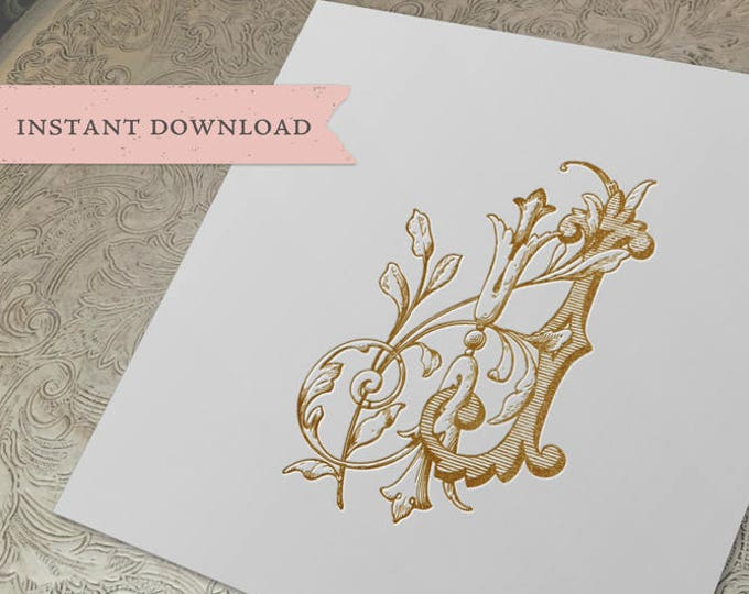 Vintage Duogram Wedding Monogram JJ Digital Download J