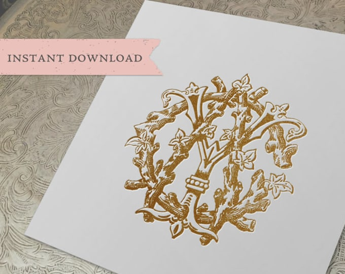 3 Initial Vintage Monogram ACY  Three Letter Wedding Monogram Digital Download CYA  YAC yCa