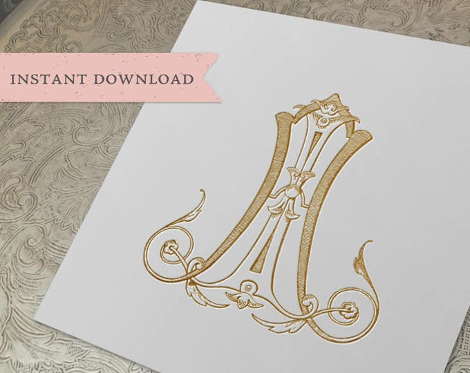 Vintage Wedding Monogram AI IA Digital Download A I
