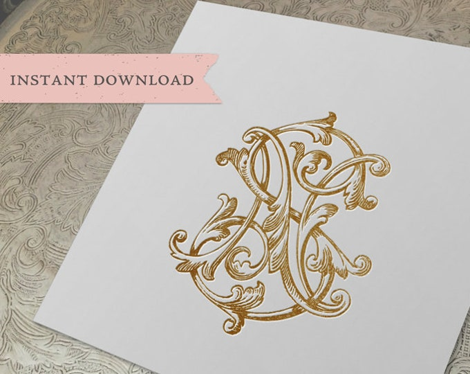 Vintage Wedding Monogram SN NS Digital Download S N