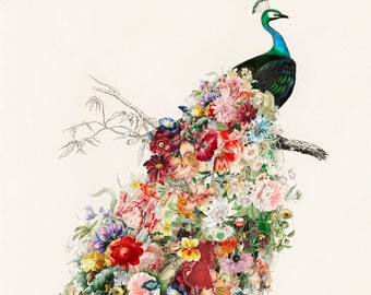 Floral Peacock Art Print - Vintage Garden Art - Nursery Children's Wall Art, 5x7, 8x10, and 11x14 included