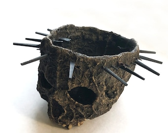 Crown of Thorns Skull