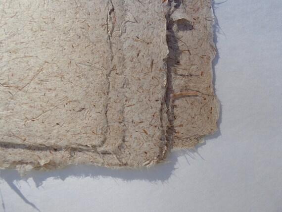 Papier à la main feuille de la belle iris croustillant feuille main dabe93
