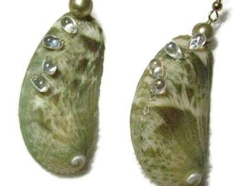 Abalone Shell Dangle Earrings, Shell Dangle Earrings