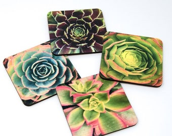 Succulent Coasters - Distressed Photo Transfers on Wood
