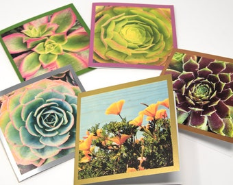 Foil Greeting Card - California Succulent and Poppy - Choice of 5 Images or Assorted Pack of 10