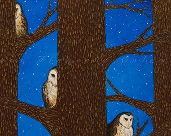 9x9 A Noble Nesting Giclee Fine Art Print ©Cara Finnerty Coleman