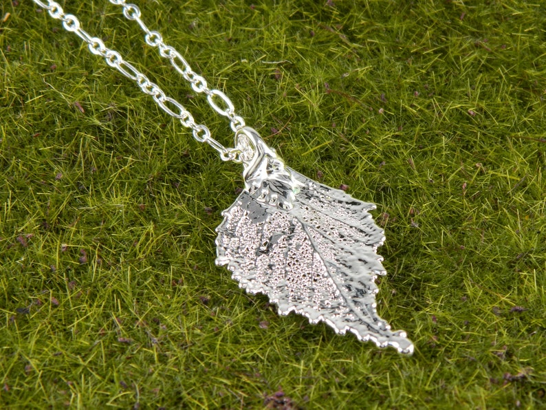 Small Silver Birch Leaf Pendant Necklace Symbol of Renewal image 0
