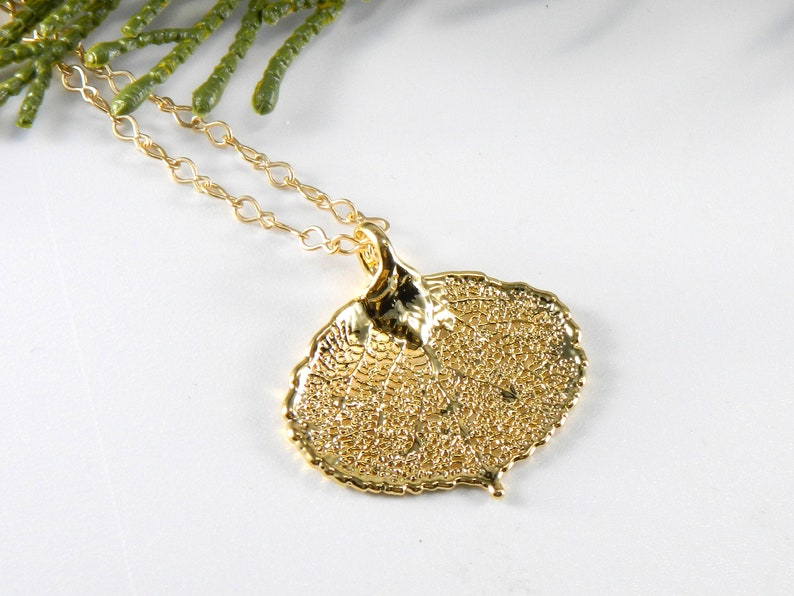 Gold Aspen Leaf Necklace on 20 inch Chain Real Aspen Leaf image 0