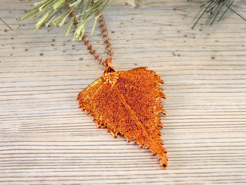 Copper Plated Birch Leaf Pendant Necklace on Long Chain Birch image 0
