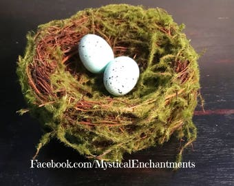 """Mossy Spring Birds nest with Robin's eggs- 3 1/2-4"""""""