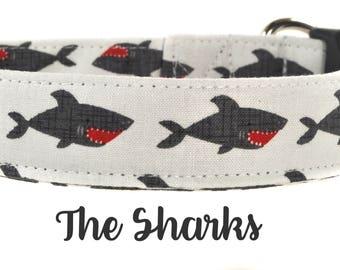 Gray and Red Shark Dog Collar - The Sharks