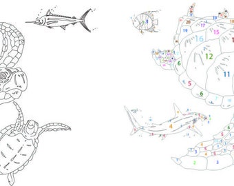 Sea Turtles 01 with pull sheet in Adobe Illustrator CS2