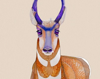 Pronghorn Antelope Purple Eyes