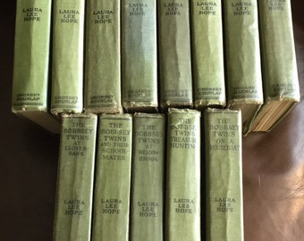 Lots of Bunny Brown and His Sister Sue and Bobbsey Twins by Laura Lee Hope Books to Choose From