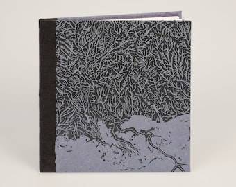 It was there all along - Handmade artist's book - tintype photography