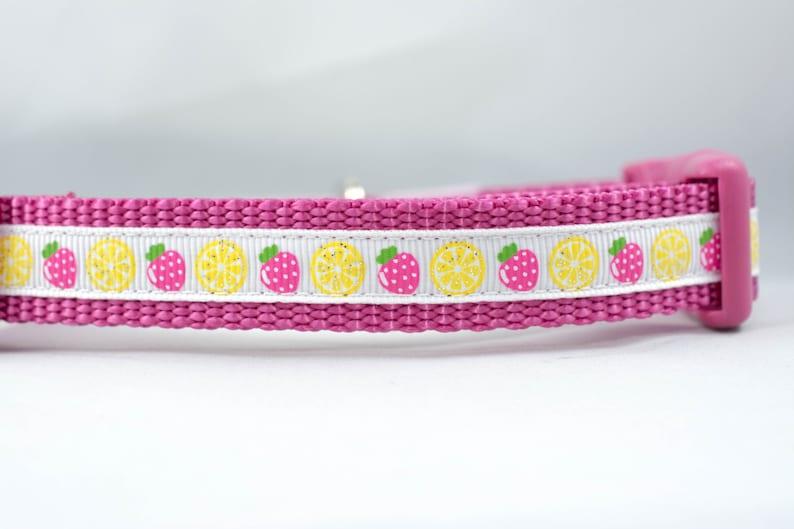 58 or 34  inch wide pink raspberry lemon glitter sparkle spring Strawberry Lemonade Dog Collar summer small dog yellow white