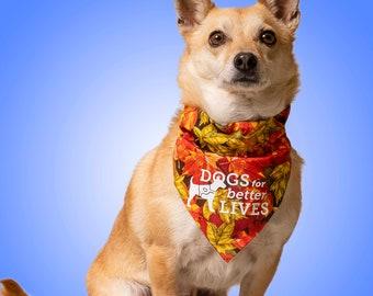 Dogs for Better Lives Bandana-rama Subscription Fundraiser