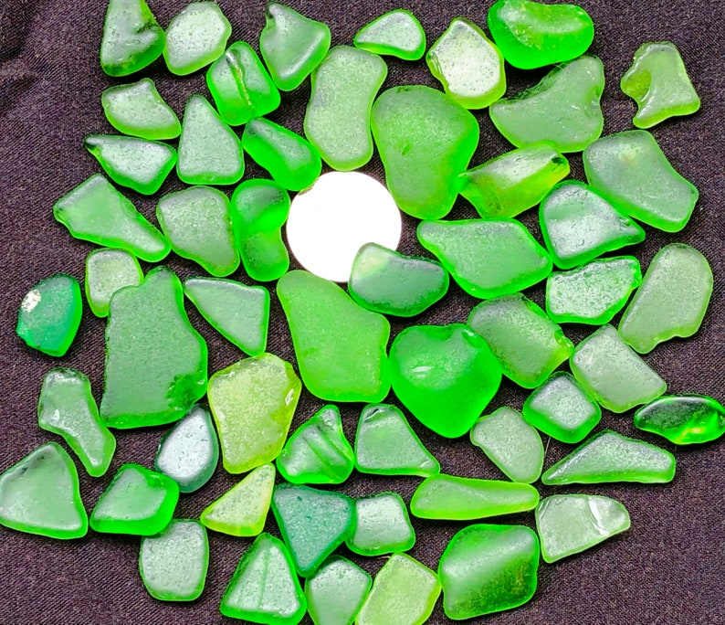 Sea glass for Collectors Beach  Glass of HAWAII GREEN GIFT image 0