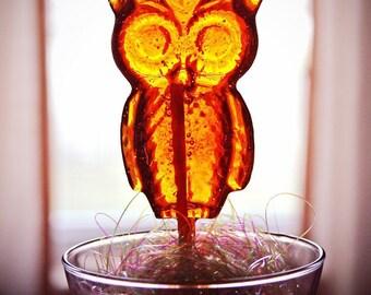 OWL Lollipops- Hard Candy Lollipops- Harry Potter Lollipops- Birthday Lollipops- Kids Birthday Lollipops- Halloween Lollipops