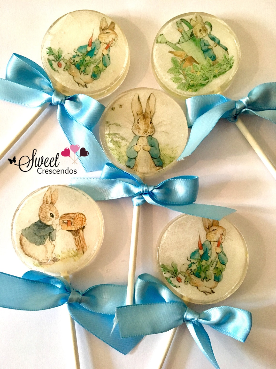 Bunny Rabbit Inspired Lollipop Collection -Hard Candy Lollipops