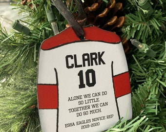 Personalized Hockey Jersey Christmas Ornament/Gift For Your Favourite Player/Personalized with Name