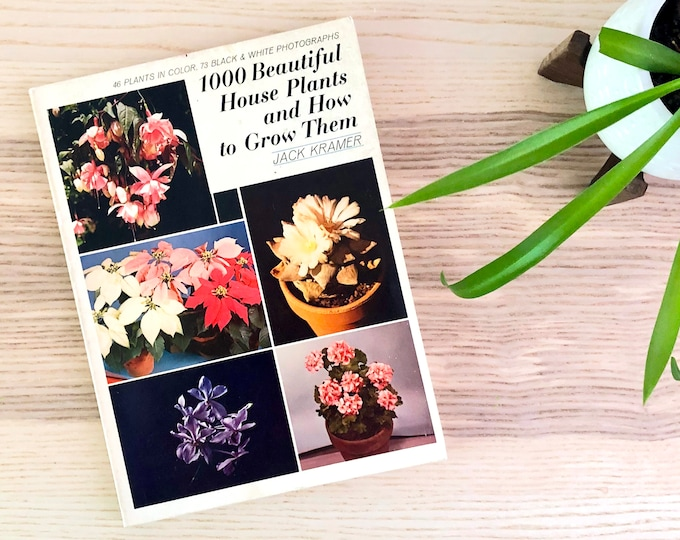 1000 Beautiful House Plants and How to Grown Them