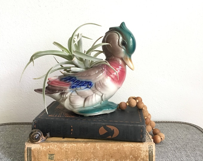 Mallard Duck Ceramic Planter Air Plant Container