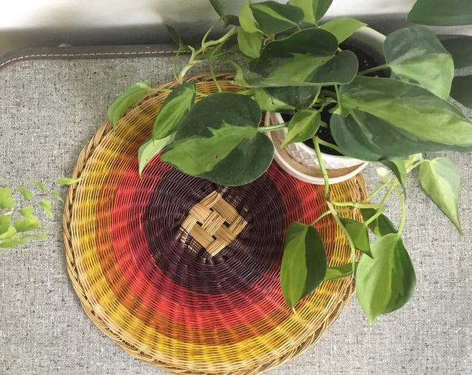 Rainbow flat weave basket mat wall hanging