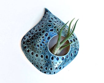 Air Plant Holder, Teal Blue, Ceramic, Pottery, Air Planter, Air Plant Wall Hanging, Tillandsia, Ceramic Planter, Air Plant Container, Indoor